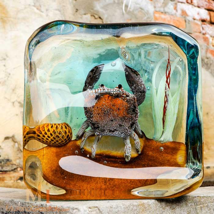 acquario murano granchio